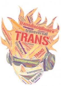 20èmes journées SFSA DIU, 22&23 novembre 2018, Annemasse/Genève. «TRANS»